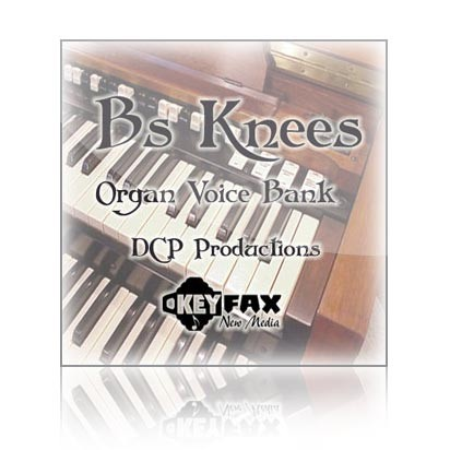 B's Knees - Voice Bank for Yamaha Classic/Motif ES/Rack ES/MO