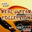 Twiddly.Bits The Real Guitar Collection