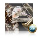 Brass - Voice Bank for Motif XS