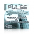 Pulse - Voice Bank for Motif ES/Rack ES/MO6/MO8