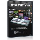 The World Of Motif XS