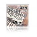 B's Knees - Voice Bank for Yamaha MO XF